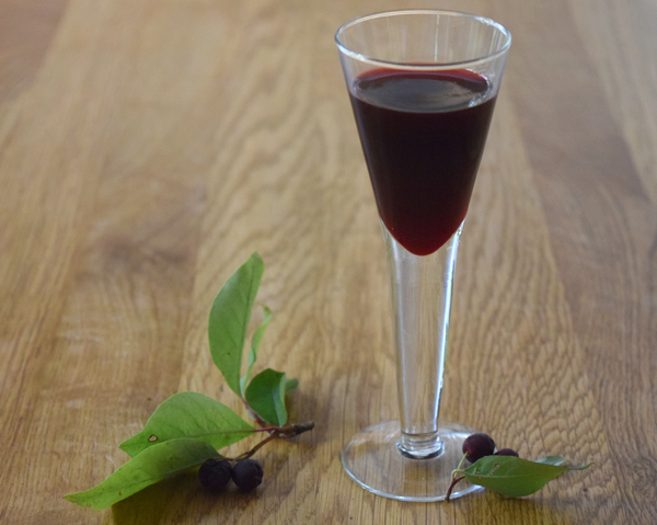 Aroniajuice i litet glas - aroniajuice är en överlägsen antioxidantkälla.